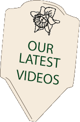 Check out our new YouTube Channel