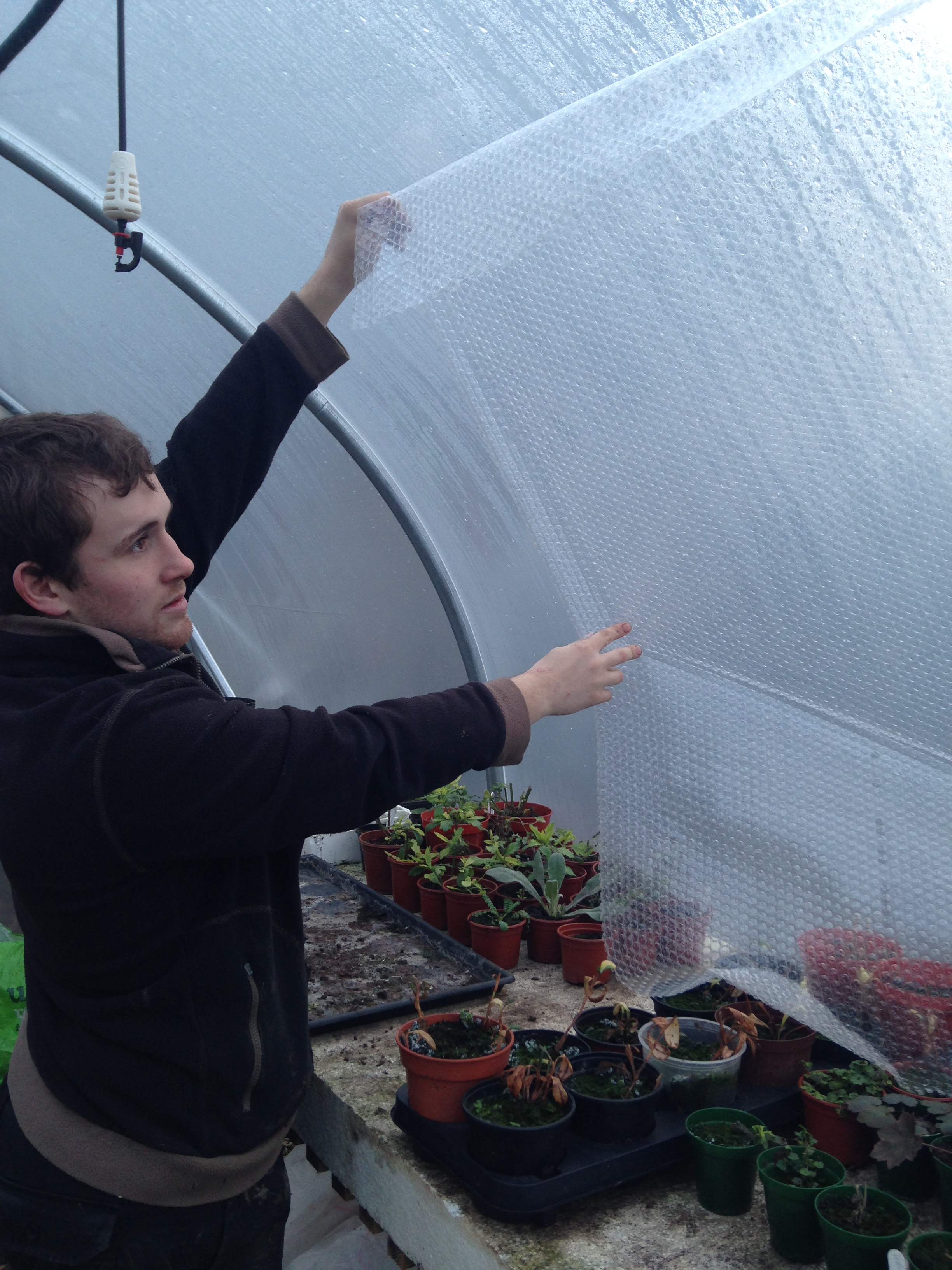 Growing Guides Premier Polytunnels
