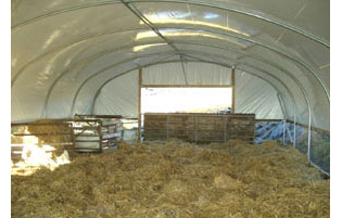 Sheep Polytunnels