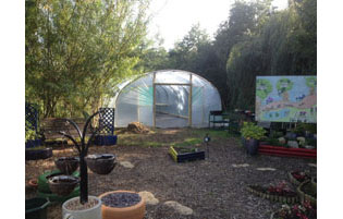 School Polytunnel