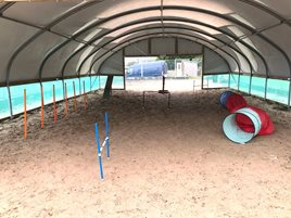 Dog Training Polytunnel