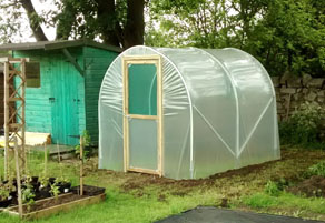 Best Polytunnel for Allotment