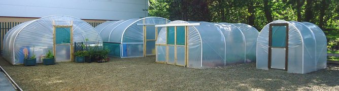 Polytunnel Display Area