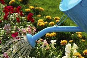 How to save waste water for the garden