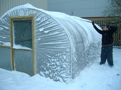 Polytunnel in Snow