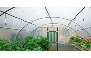 Polytunnel Irrigation