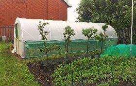 Polytunnel Planning Permission